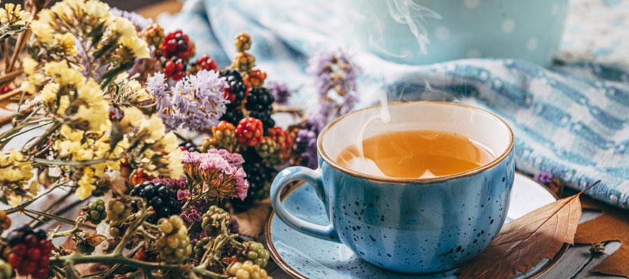 Des infusions et thés bio